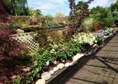 Clandon Park Garden Centre